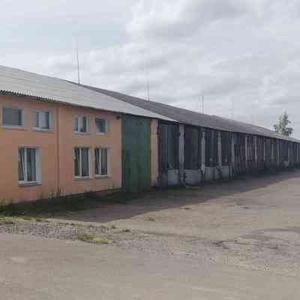 Помещения производственно-складские и офисные в г. Волковыск